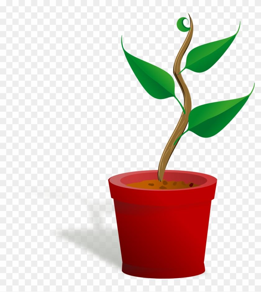 Big Image - Plant Clip Art #89960