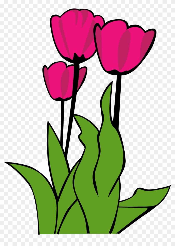 Tulip Clip Art - Tulip Clip Art #90350