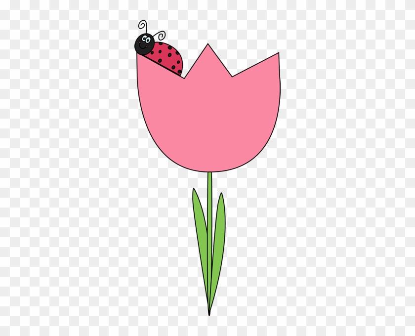 Ladybug On A Tulip - Ladybug On A Tulip #90987