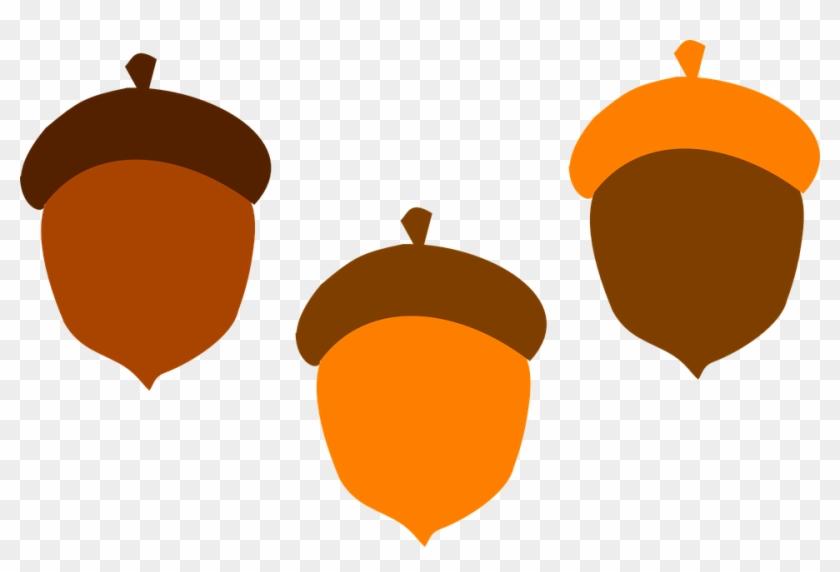 Acorn Brown Fall Food Tree Orange Squirrel - Fall Acorn Clip Art #93651