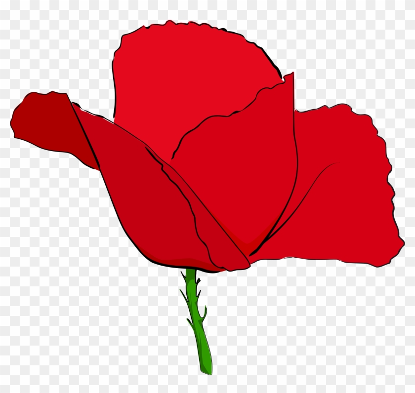 Download - Red Image Of Poppy Flower #94037
