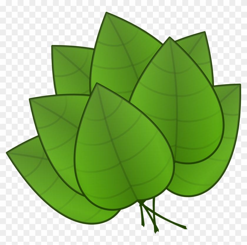 Free Leaves - Parts Of The Plant Leaves #94072