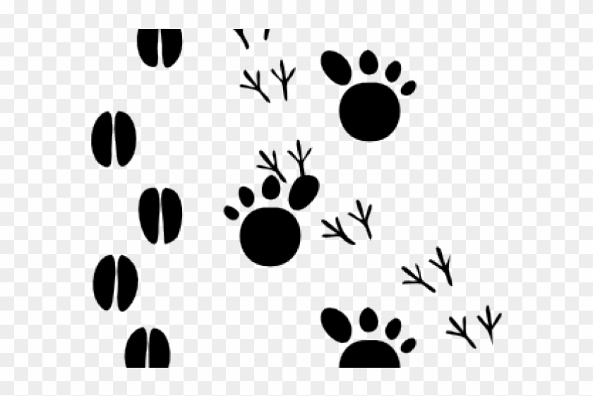 Animal Tracks Clipart Animal Footprints Free Transparent Png Clipart Images Download