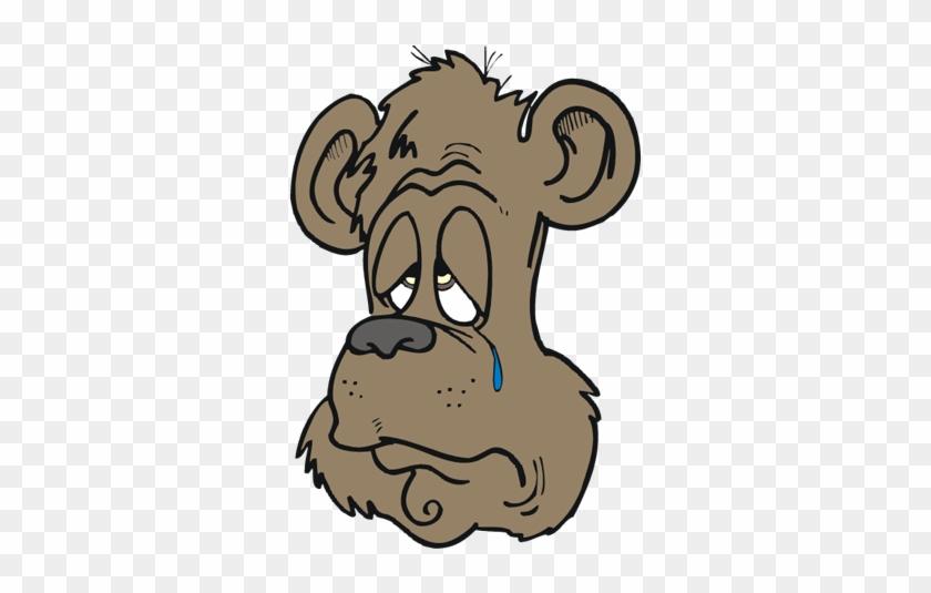 Go From Sad To Happy Fast - Sad Bear #506129