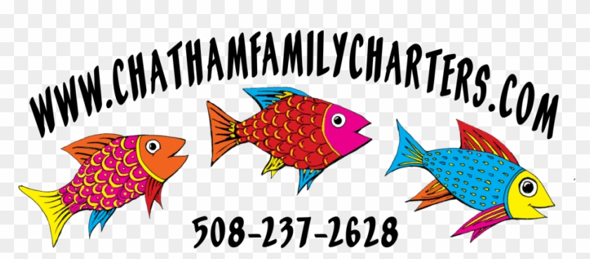 Chatham Family Charters - Coral Reef Fish #509609