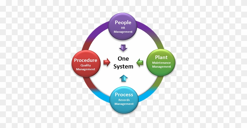 Using 4ps, Your Business Information Is Accessible - People Plant Process #514762