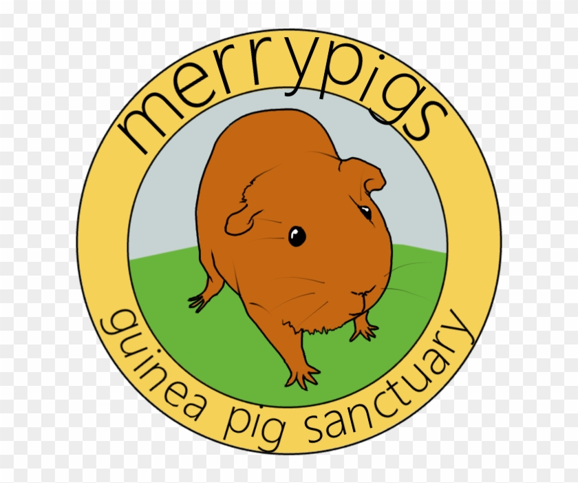 A Small Guinea Pig Sanctuary Run In Staffordshire, - Federal Election Campaign Act 1974 #517506