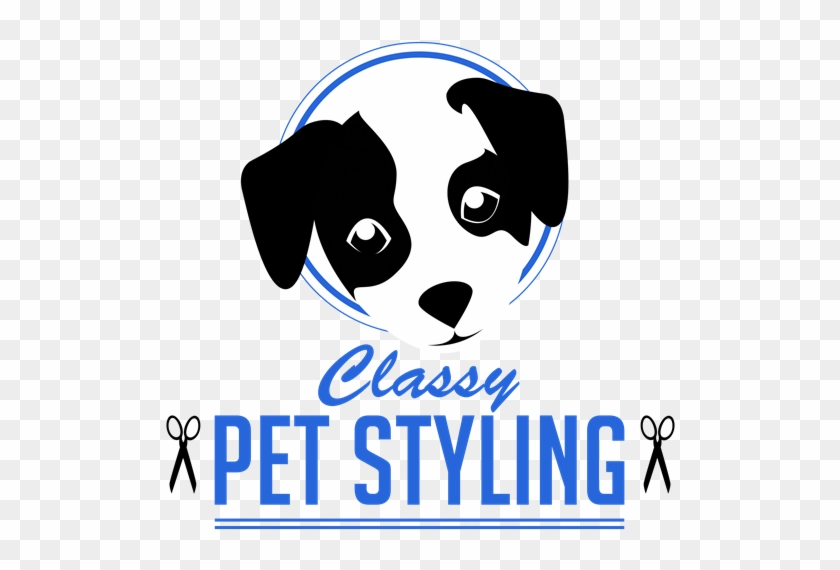 Classy Pet Styling - Twitter Header About Strong #523733