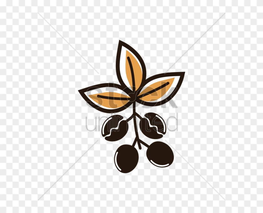 Coffee Plant Clipart Vector Png - Coffee Bean - Free