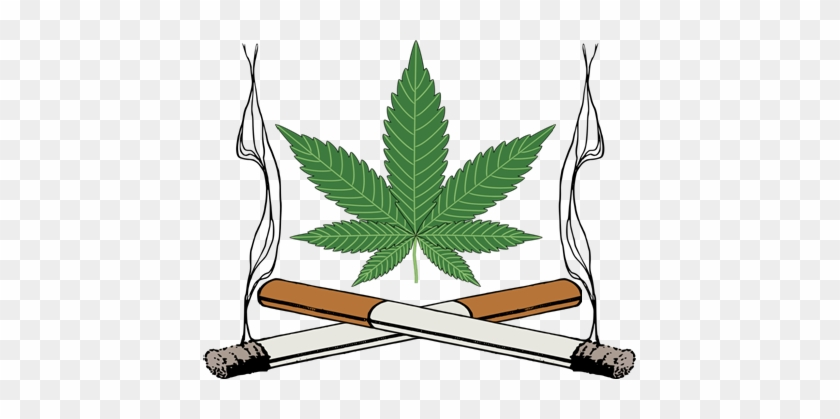Marijuana Clipart Tobacco Leaf - Marijuana Leaf #530137