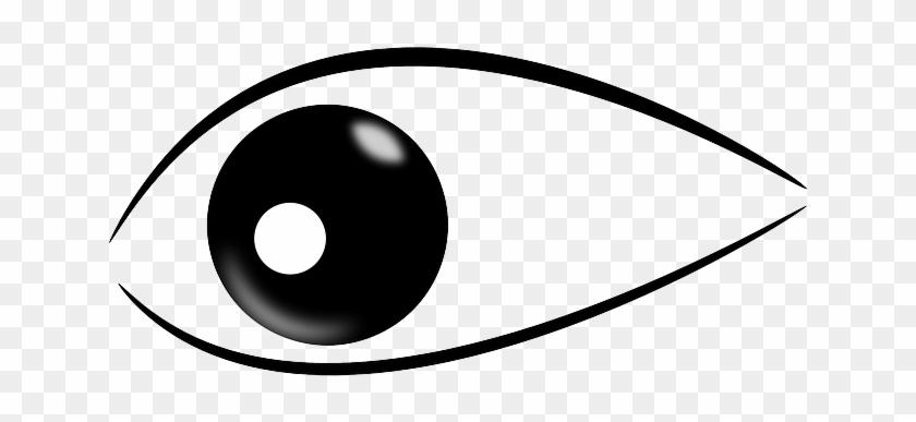 Iris Pupils, Eye, Look, Sight, Watch, Observe, Iris - Imagenes De Un Ojo Png #530748