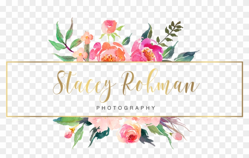 Wedding and family photographer based in central illinois cool wedding and family photographer based in central illinois cool blogger business cards colourmoves