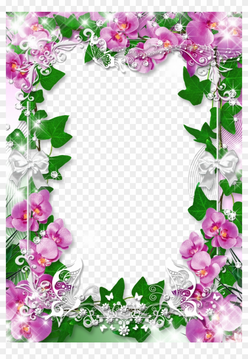 Frame, Studio, House, Flower Backgrounds, 1, Style, - Orchids ...
