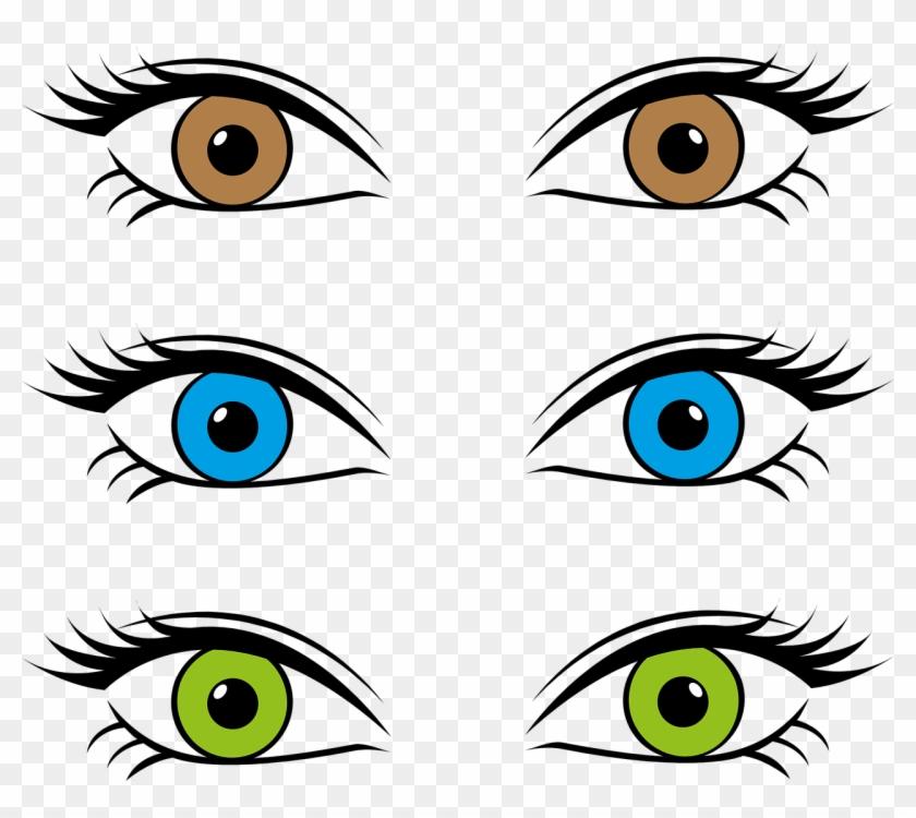 Eyes Eye Color Iris Brown Blue Png Image - Three Eye Colors #543438
