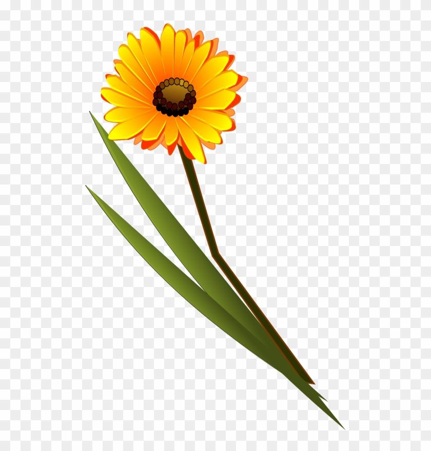 Free Flowers Gerbera - Single Flower Images Png #94864