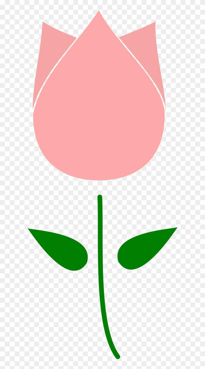 Clipart Tulip Flower - Psd #95992