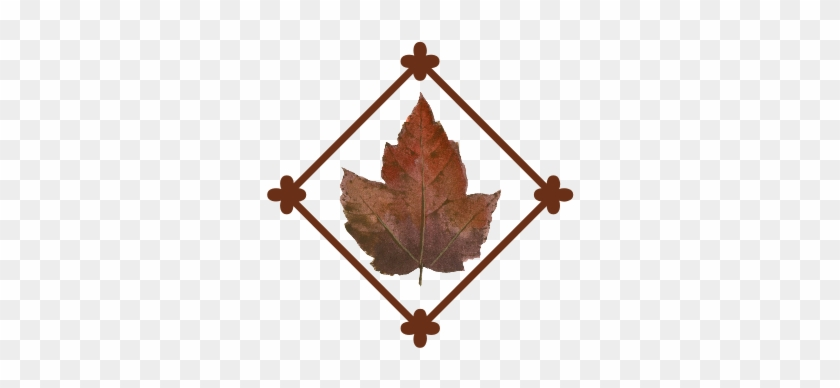 Leaf Flourish - Maple Leaf #96437