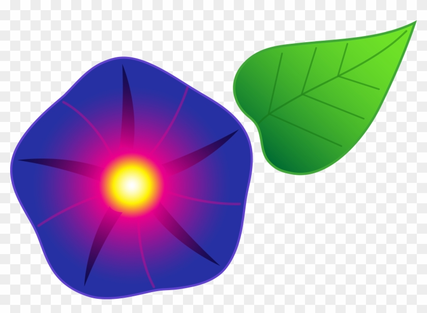 Flourish Clipart Morning Glory Vine Clipart Sweet Pea - Morning Glory Cartoon Flower #96509