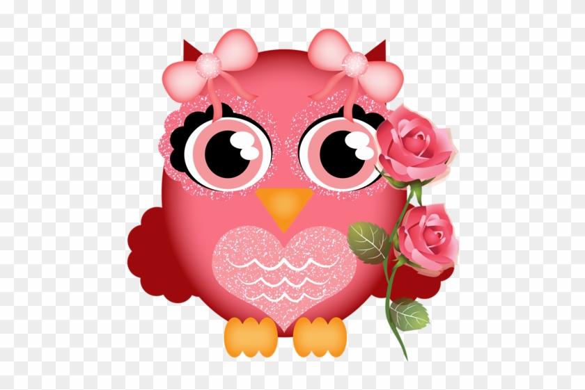 Aves & Passáros & Corujas Etc - Owl #97015