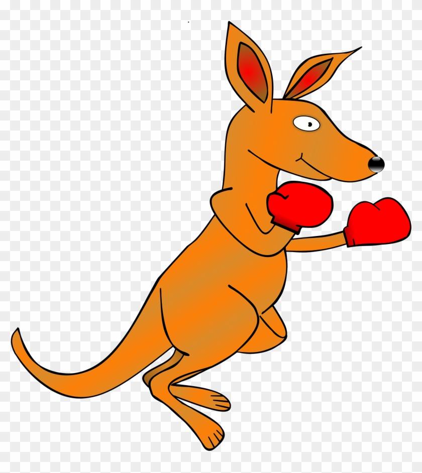 Kangaroo Clipart Kangaroo Clip Art Boxing Gloves Free - Kangaroo Clipart Transparent #98136