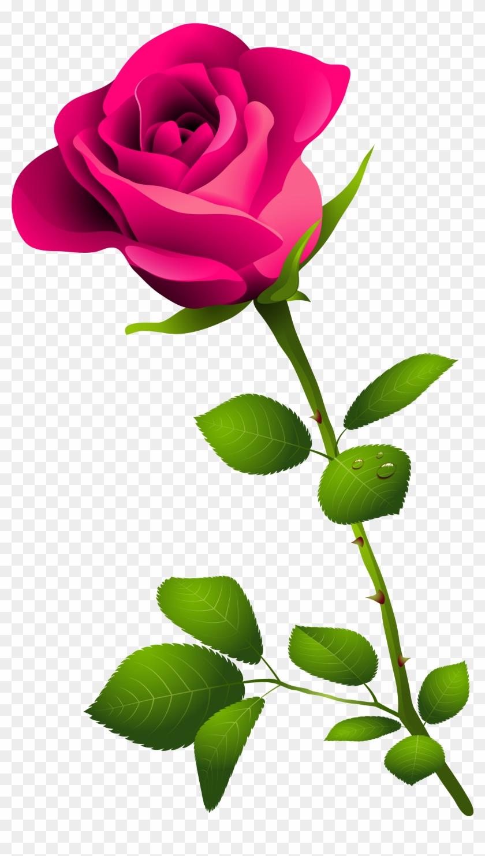 Clip Art Pink Rose Pink - Happy Rose Day Image Download #98190