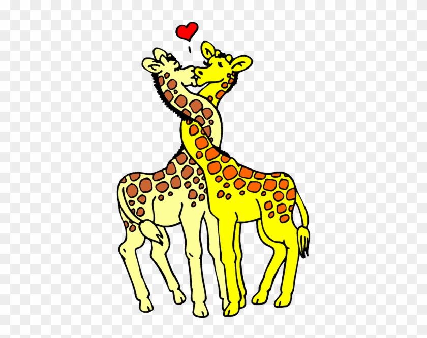 Tags - - Giraffe Giraffe Giraffe Picture Frame #99022