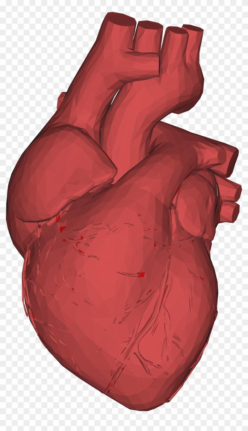 Big Image - Human Heart 3d Png #100083