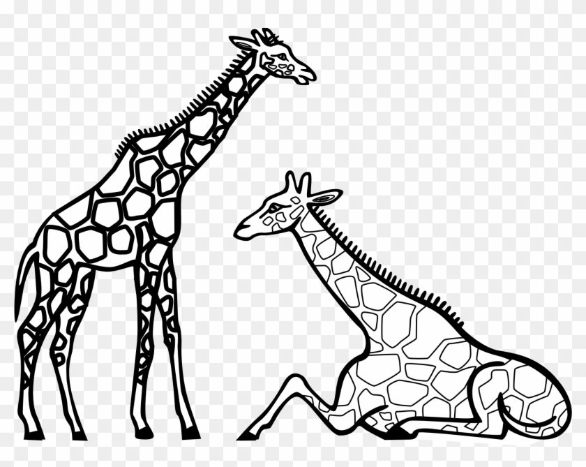 Giraffe Clip Art Outline - Giraffe Coloring #100192
