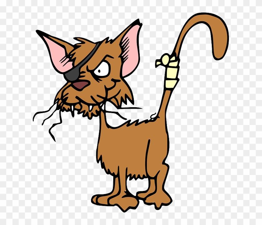 Stray Cat Clip Art #100990