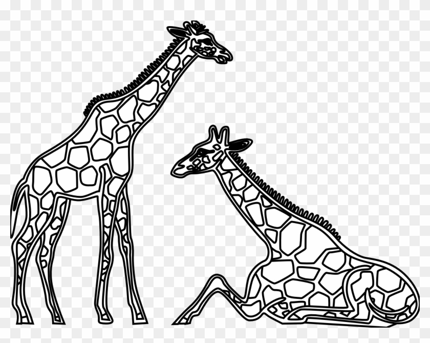 Clipart Library - Clipart Library - Giraffe Black And White #101903