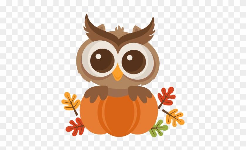 cute fall clipart fall owl clip art free transparent