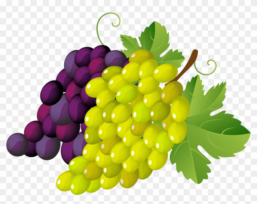 Clip Art Grapes Clipart Images Of Grapes Free Transparent Png