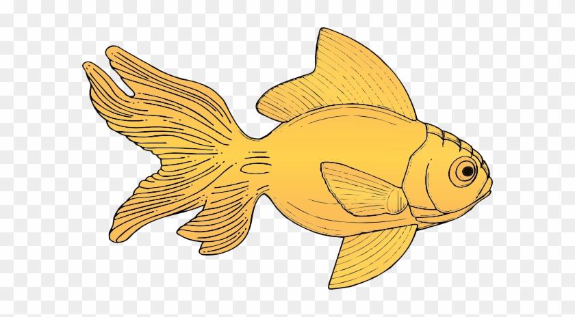 Goldfish Clip Art - Gold Fish Clipart #551313