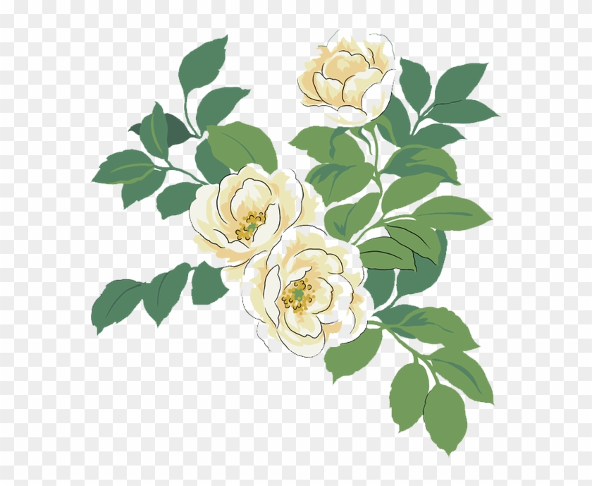 Japanese Camellia Red Watercolor Painting Illustration - Watercolor White And Green Flowers Free Png #552835