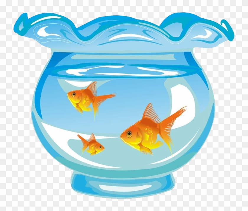 Goldfish Aquarium Fishkeeping - Goldfish In Fish Tank Cartoon #563640