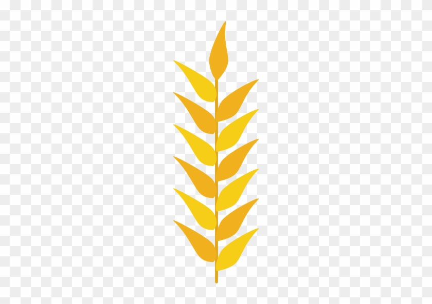 Image Result For Wheat Vector - Dessin Épi De Blé #567864