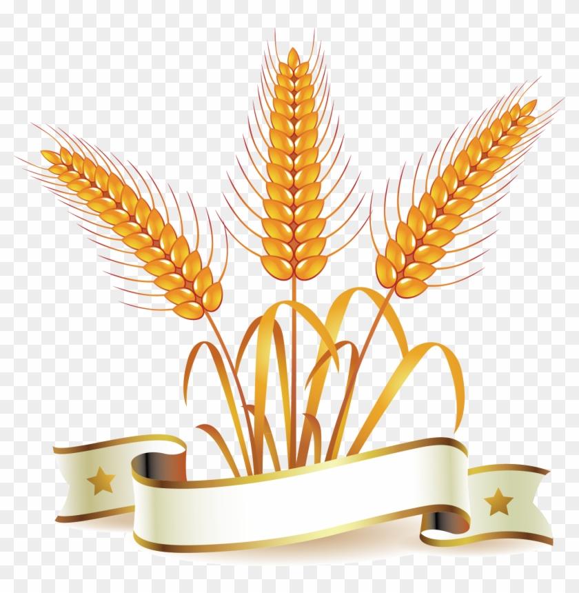 Common Wheat Whole Wheat Bread Clip Art - Bread #568162