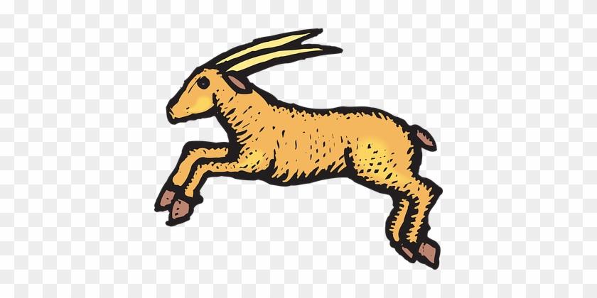 Antelope, Jumping, Animal, Horns, Hooves - Antelopes Clipart #571992
