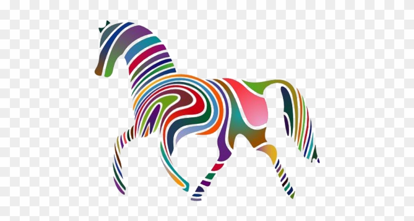 Equine Anatomy And Biomechanics - Horse Of A Different Color Idiom #571993