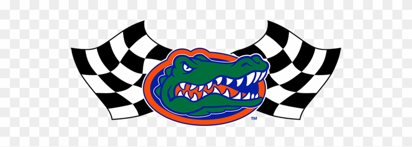 At Gator Motorsports, The Opportunity To Design, Manufacture, - Gator Head Uf Logo #572429