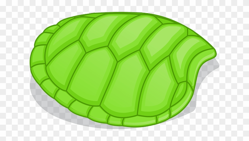 Shapes Turtle Green Without Pattern Cartoon Shapes Turtle