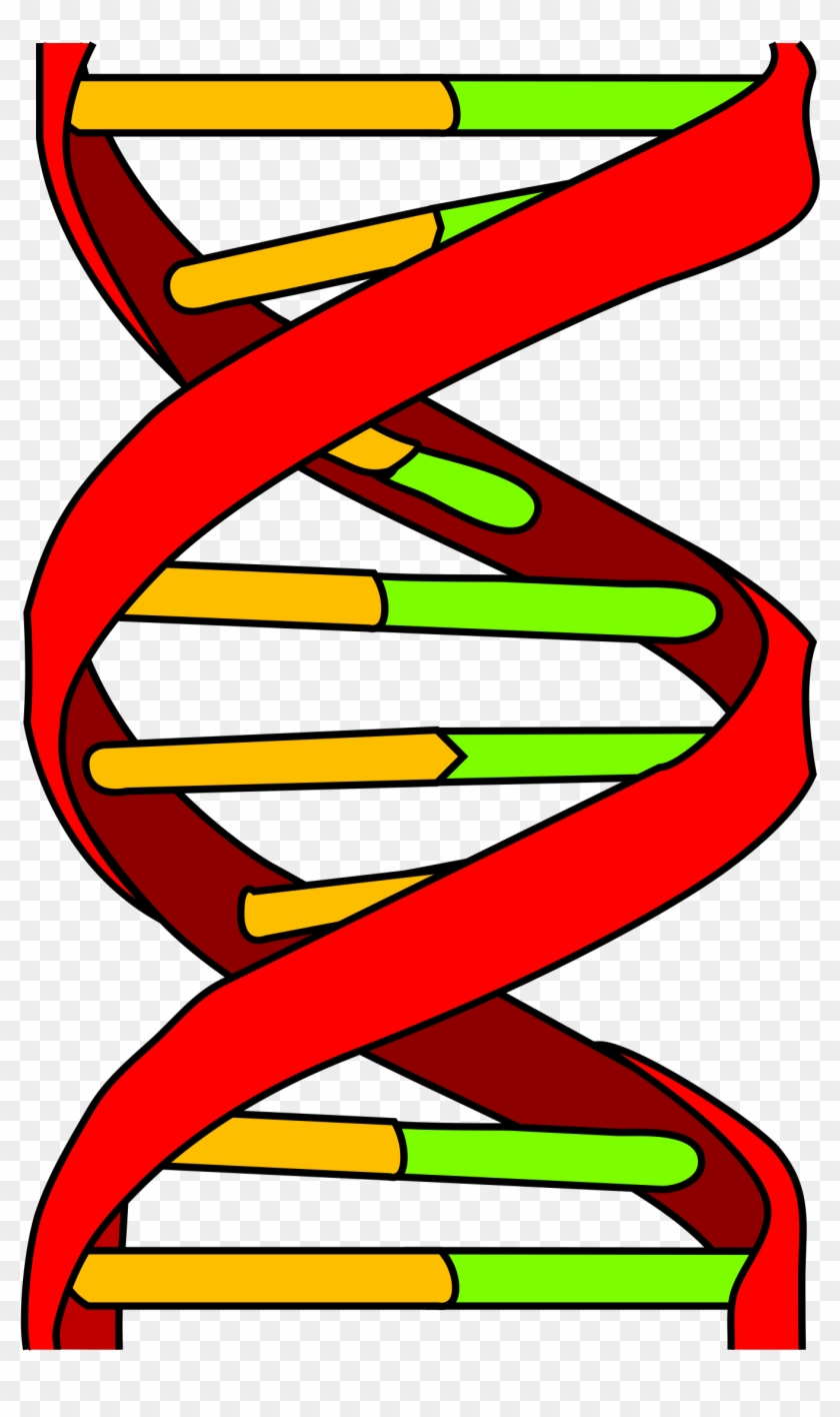 genetics and cancer - dna icon - free transparent png clipart images