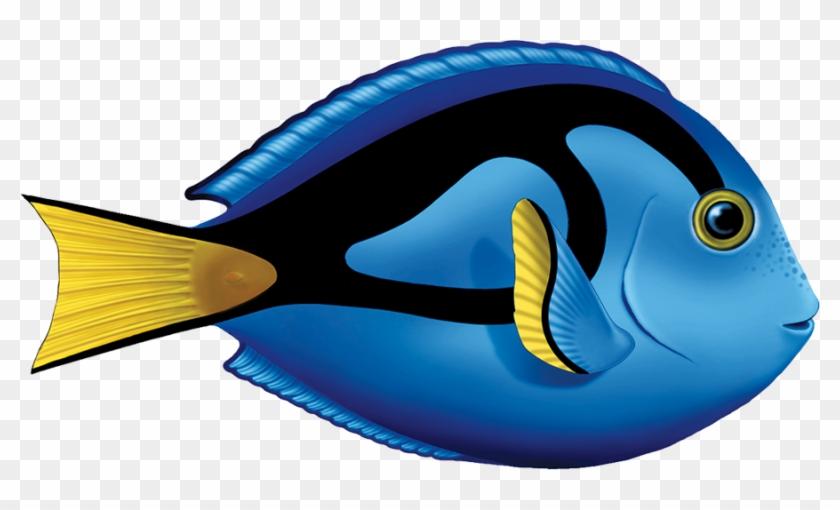 "Porc Ta80 8 8""x5"" Blue Tang Fish Porcelain Pool Mosaic - Blue Tang Fish Clipart #579023"