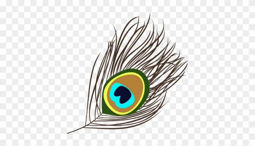 peacock peacock feather vector png free transparent png clipart images download peacock peacock feather vector png