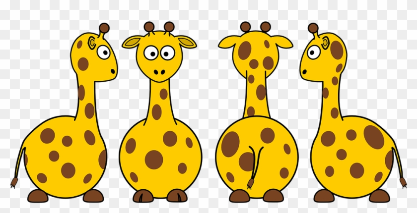 Zoo Animals Clipart 23, Buy Clip Art - Front And Back Animals #581516