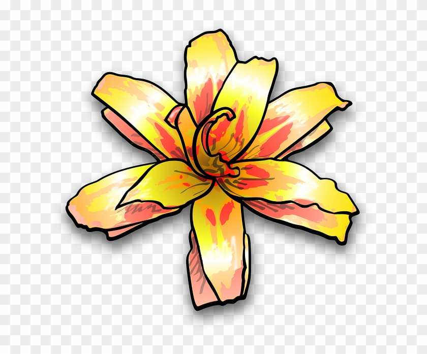 Plant Lily, Flower, Yellow, Painterly, Colour, Plant - Yellow Flower Clip Art #582384