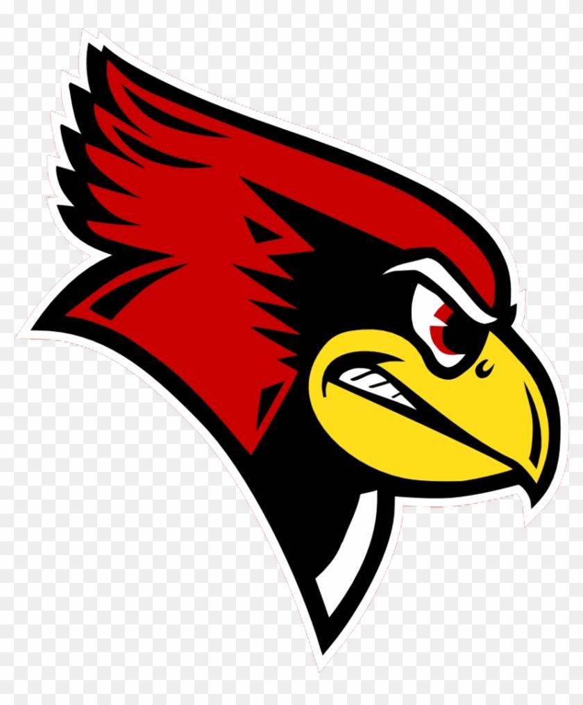 Team Orthopedic Surgeons For - Illinois State University Redbird #582755