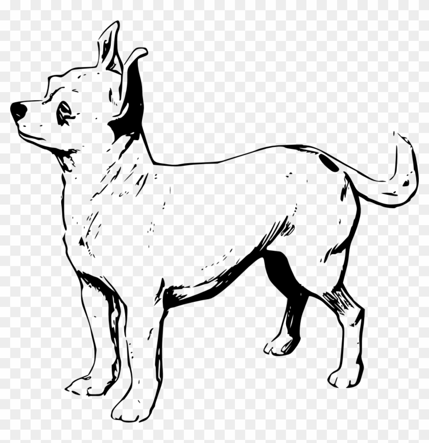New Chihuahua Coloring Pages Free Printable 13173 Throughout ...