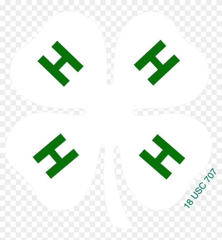 4-h Clover U0026middot Marketing Clipart - 4 H Logo White #103380