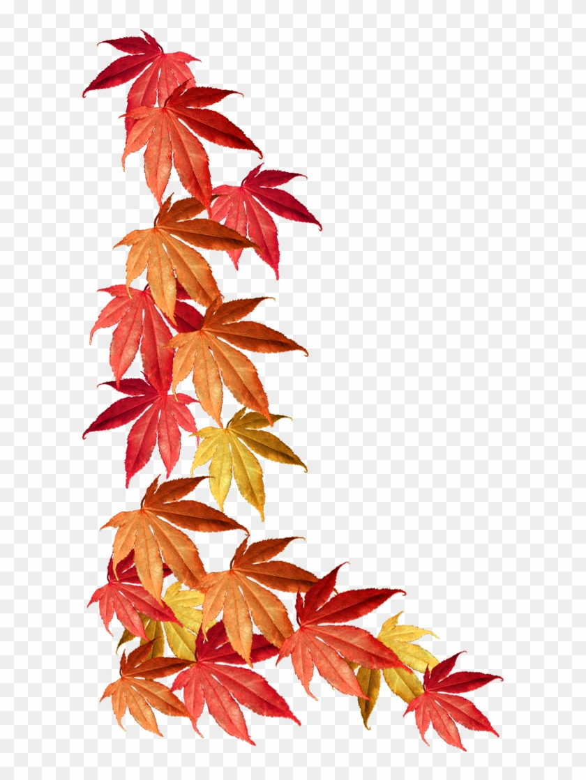 Border Of Autumn Leaves - Autumn Leaves Border Png #103397